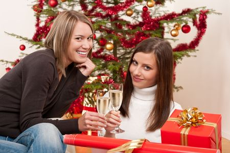 Two young woman with champagne and Christmas tree and present Stock Photo - 5714170