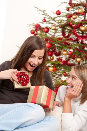 Two smiling women with Christmas present in front of tree Stock Photo - 5714166