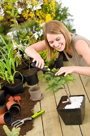 pruning shears: Gardening - woman trimming bonsai tree with pruning shears