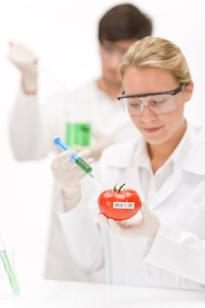 Genetic engineering - scientists in laboratory, GMO testing experiment Stock Photo - 8029298