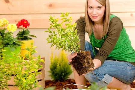 potting: Gardening woman planting potted green spring on terrace Stock Photo