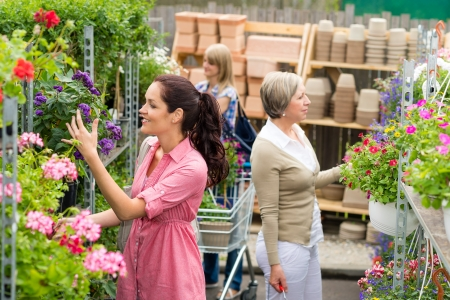 Woman taking potted flower shopping purple plant in garden center photo