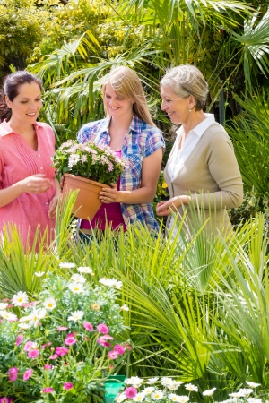 Three woman shopping potted flowers at garden centre green house photo
