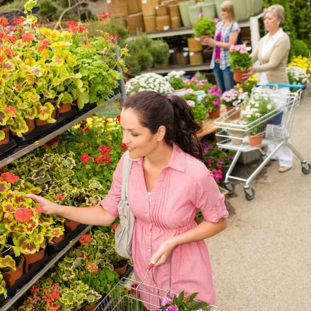 Young woman choosing flowers at garden store green house Stock Photo - 14398829