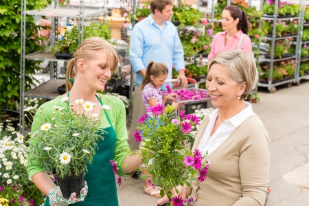 Female florist give advice to senior customer shopping for flowers Stock Photo - 14449955
