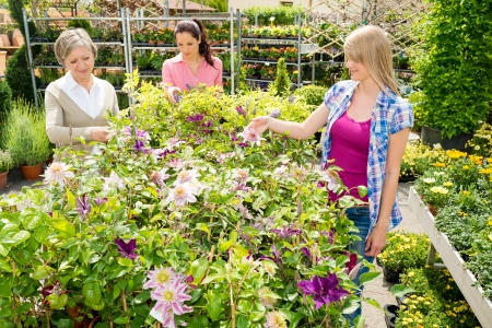 Woman shopping at flower shop green house garden centre photo