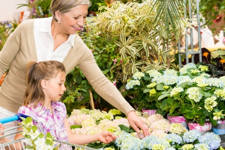 sowbread: Grandmother and granddaughter buying flowers at garden centre