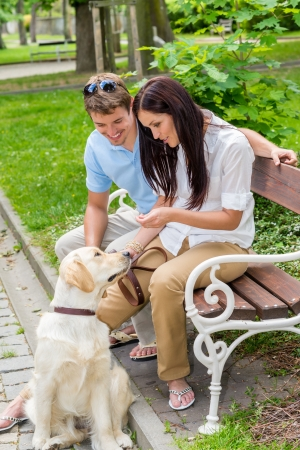 Young couple training dog in the park happy teaching pet Фото со стока