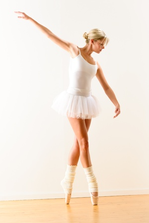 Beautiful ballerina on tiptoe with raised arm dancing pointe Stock Photo - 16984880