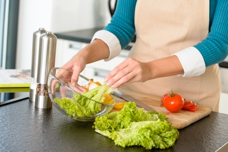 Woman preparing salad bowl vegetables kitchen cooking food hands Stock Photo - 17388902
