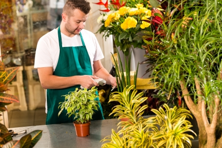 Man florist reading price barcode reader flower shop plant photo