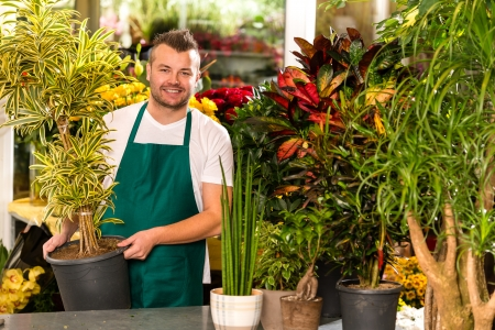florists: Male shop assistant potted plant flower working smiling Stock Photo