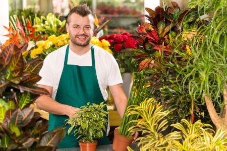 Heureux, mâle, fleuriste travaille magasin de jardinage fleur
