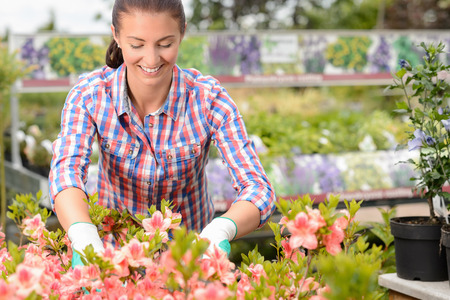 garden center: Smiling woman working with potted flowers at garden center