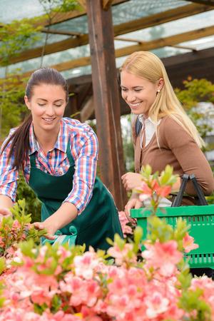 advising: Gardener woman advising customer buying plants in greenhouse