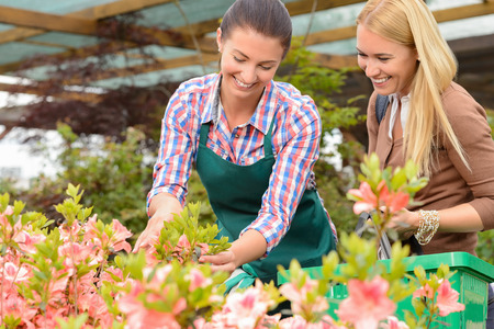 show garden: Garden center woman show flowers to smiling customer buying plants Stock Photo