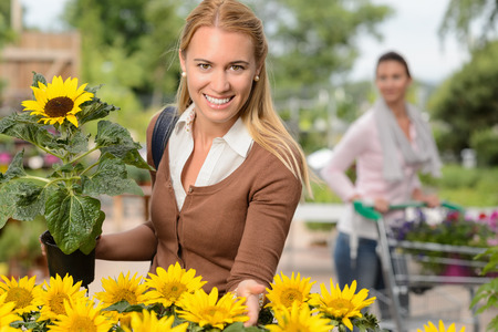 Smiling customer woman hold potted sunflower in garden center photo