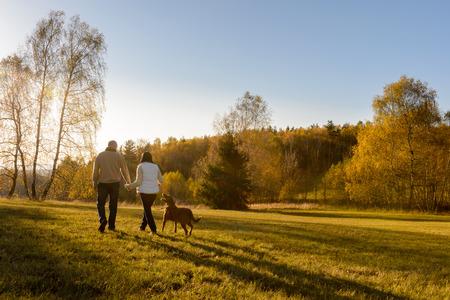 parejas caminando: Pareja paseo retriever perro atardecer de otoño pradera del campo de la mano