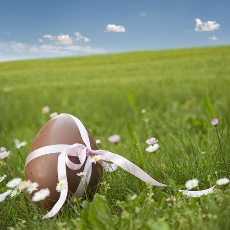 chocolate easter egg in spring landscape photo