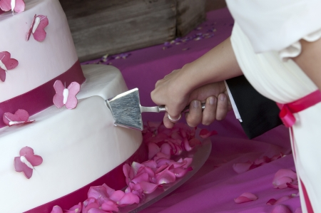 butterfly knife: bride and groom cut the wedding cake