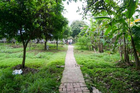 tam: Hoa Lu - Tam Coc Hanoi