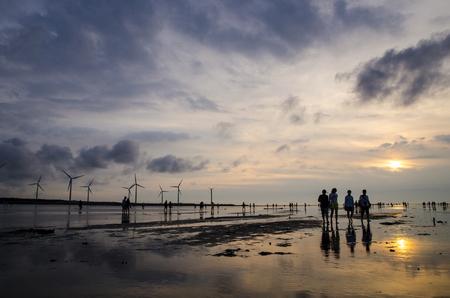 wetland: gaomei wetlands