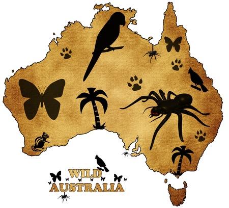 darwin: Wild Australia