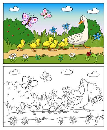 ブックまたはページの漫画イラストのぬりえ。母鴨とアヒルの子。マガモのアヒルと赤ちゃんアヒルの子。
