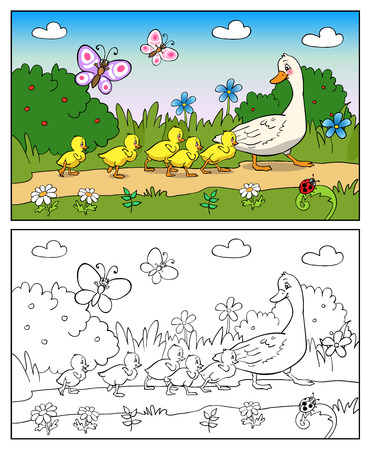 Coloring book or page Cartoon Illustration. Mother duck and ducklings. Mallard duck and baby ducklings. Ilustração