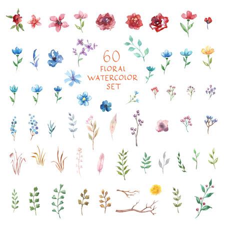 Bloemen decor set. 60 verschillende vector en decor elementen voor ontwerp. Geïsoleerd.