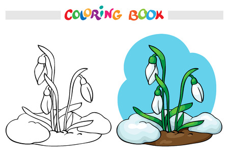 melt: Coloring book or page. Snow melts and grow the first spring flowers - snowdrops. Vector illustration. Illustration