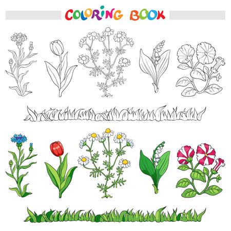 Kleurboek of pagina met bloem korenbloem, madeliefje, tulp, lelie van de vallei, en petunia .. Vector illustratie.