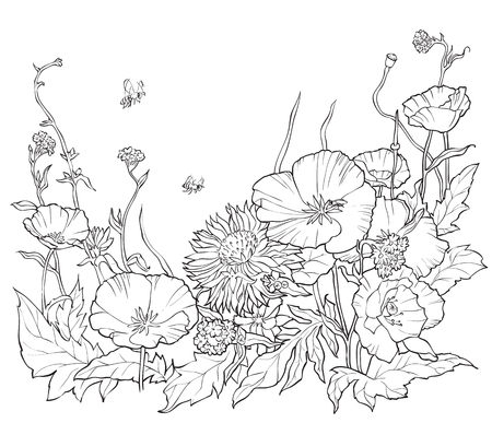 手描きの花で塗り絵。●白黒の夏のイラスト。