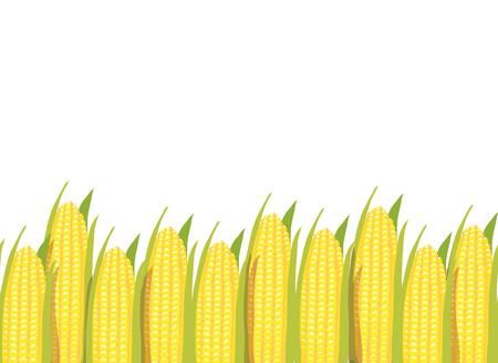 Yellow corn plants horizontal seamless pattern background border Иллюстрация