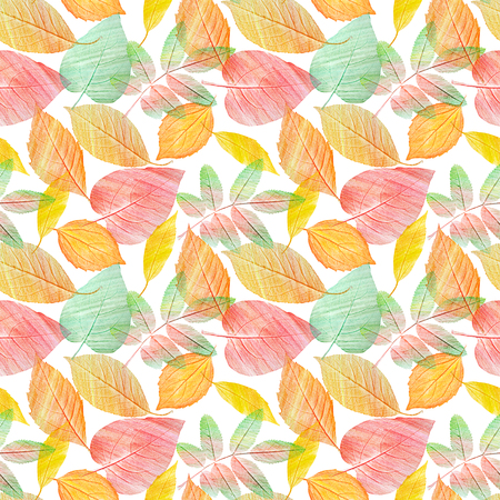 A seamless background pattern with green and golden yellow leaves on white, toned 写真素材