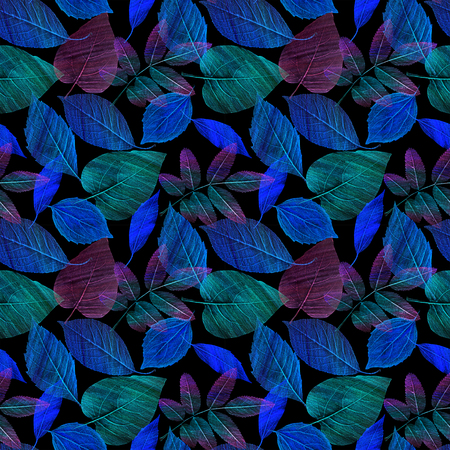 A seamless pattern with hand draw green and blue leaves on black background 写真素材