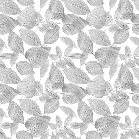 A seamless background pattern with hand draw gray pencil leaves on white 写真素材