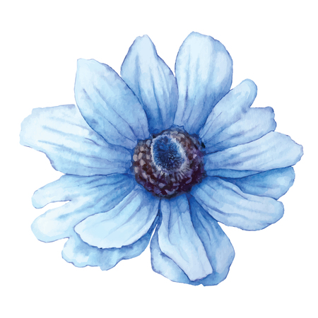 Wildflower blue anemone in watercolor style isolated on white background. Cutout flower for background, texture, wrapper pattern, frame or border.  イラスト・ベクター素材