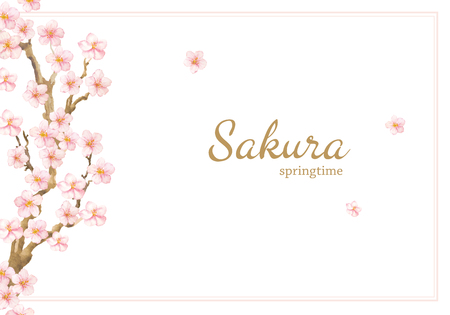 Vector Hand painted card with sakura flowers and branches. Watercolor springtime illustration isolated on white background. Natural card design.