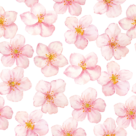 Vector watercolor sakura flowers pattern on white background. Collection cherry flowers. 写真素材