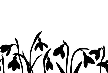 Vector spring seamless border with silhouette of snowdrops on white background.