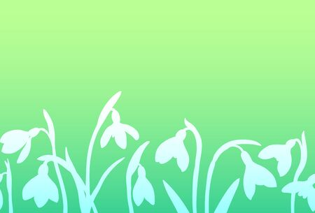 Vector spring seamless border with silhouette of snowdrops on green background. Illusztráció