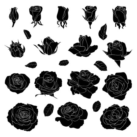 Vector set of template roses. Black silhouette flowers isolated on white background. Illusztráció