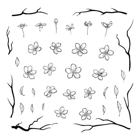 Set of cherry blossom flowers leaves and black branches in outline style for greeting cards, invitations or pattern