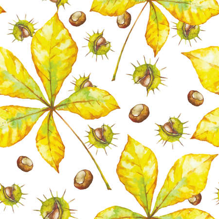 Vector watercolor seamless pattern with chestnut and autumn leaves on white background. Floral background design.
