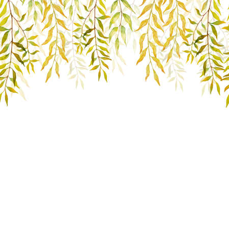 Horizontal Seamless background with autumn branches and leaves of willows. Hand painted branches and leaves on white background. Natural leafy card design