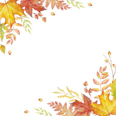 Herbal mix vector frame. Watercolor painted plants, branches and leaves on white background. Natural fall design for holiday, greeting and invitation card.