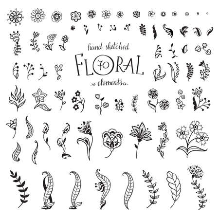 Vector Big Set hand-drawn decorative flowers and leaves. Floral collection isolated on white background.