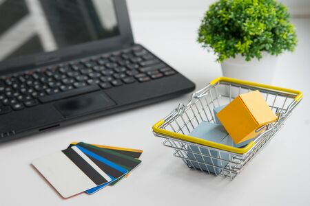 Laptop, green plant, shopping basket and credit cards. Online shopping and delivery conception horizontal photo