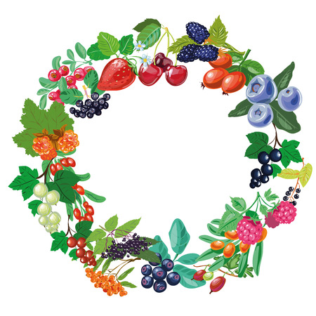 Berry frame. Twigs and berries. Isolated vector object on white background.
